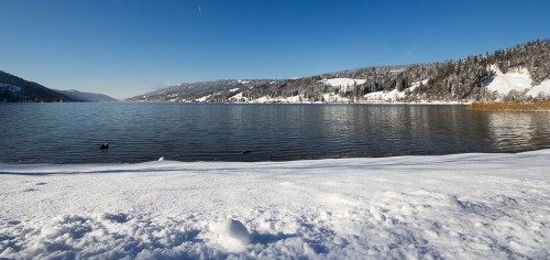 alpsee-winter_02.jpg